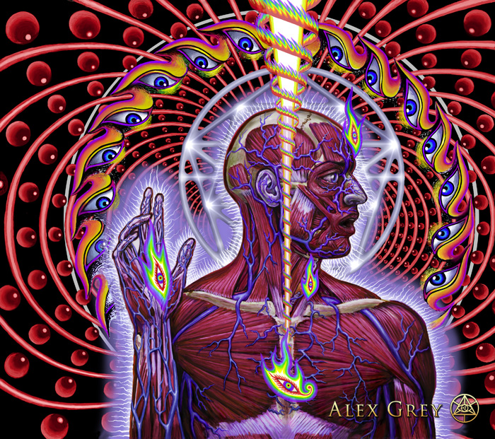 Dissectional Art for Tool's Lateralus CD