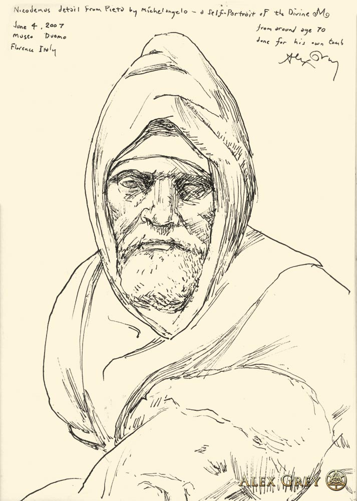 Study of Michelangelo's Portrait of Nicodemus