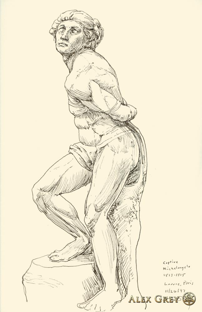 Study of Michelangelo's Captive