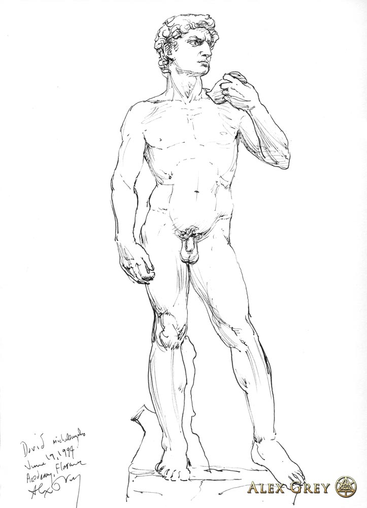 Study of Michelangelo's David