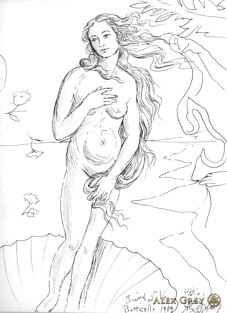 Study of Botticelli's Venus