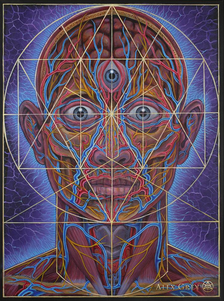 Human Geometry Alex Grey