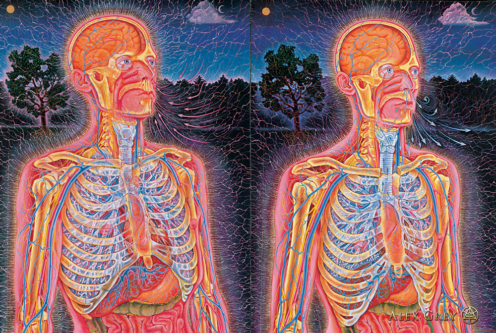 Psychedelic Spirit Paintings Alex Grey Art Gallery: Alex Grey