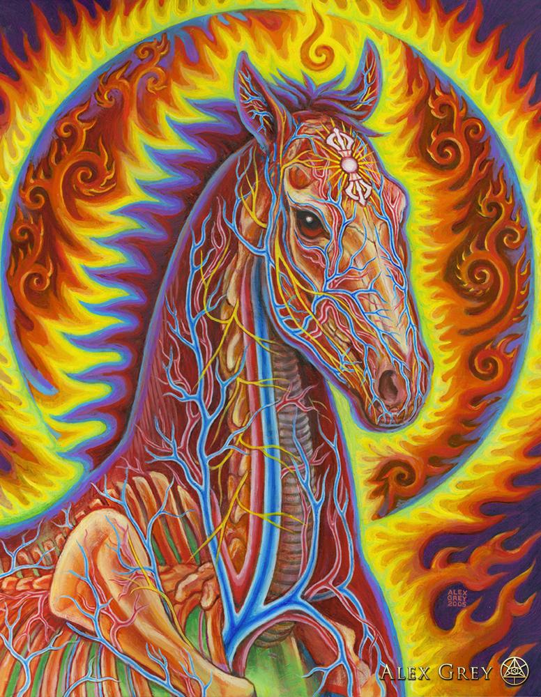 Raves Near Me >> Vajra Horse - Alex Grey