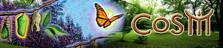 cosm newsletter banner