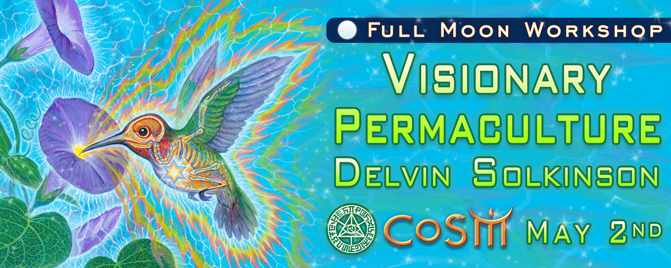 visionary permaculture cosm delvin solkinson