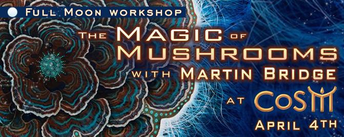 magic of mushrooms with martin bridge cosm