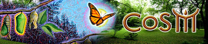 cosm newsletter alex grey allyson grey